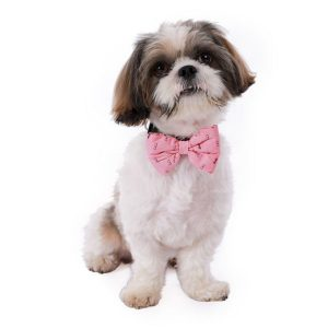 Pink Ludlow Bow Tie