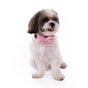 Pink Chrysler Bow Tie